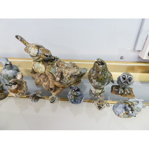 37 - NINE FRANCES MURPHY POTTERY MODELS OF BIRDS, ANOTHER, of a FROG ON A LILY PAD and SIX OTHER SIMILAR ...