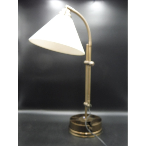 26 - Hobbyists Desk Lamp with Daylight Bulb (2ft)...