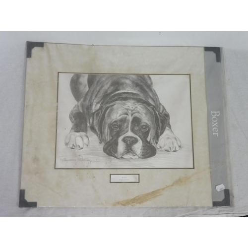 54 - Pollyanna Pickering Print of Boxer...