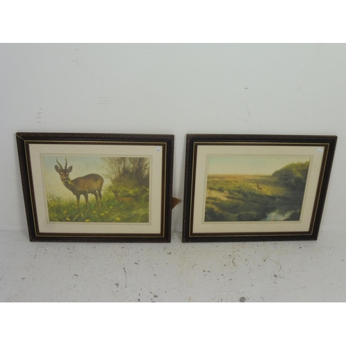 57 - Pair of Framed and Glazed Prints...