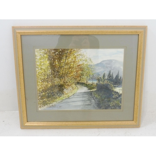 170 - An Original Water Colour by G Rodilosso Depicting Ullswater...