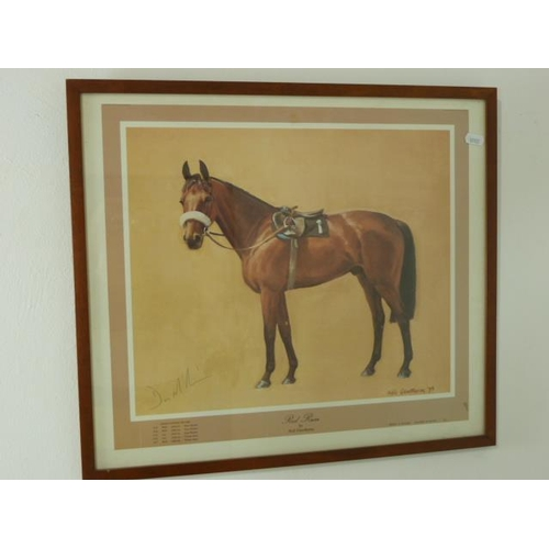 13 - Framed and Glazed Print of Red Rum Signed in Pencil By Trainer D. McCain (20.5
