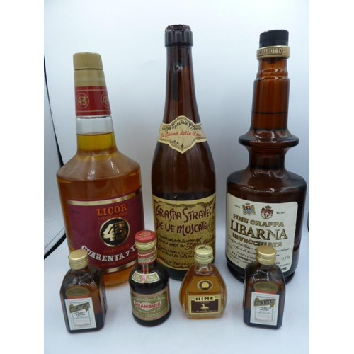 21 - A Selection of Alcohol incl 3 Large bottles and 4 Miniatures....