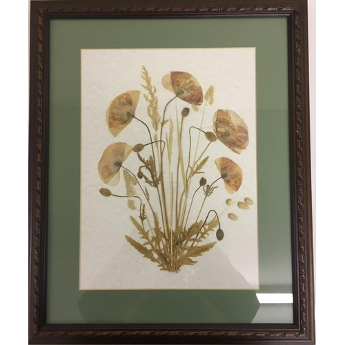 15 - Framed Pressed Flowers. Dimensions(cm) H57 W47