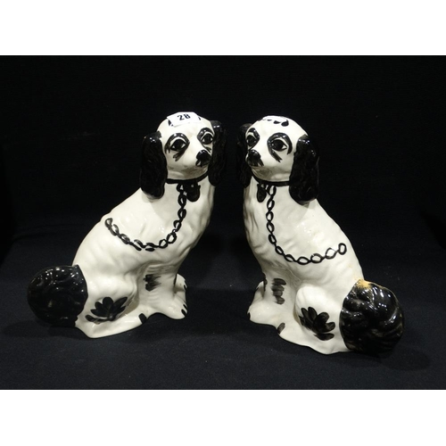 28 - A Pair Of Late Staffordshire Pottery Black & White Seated Dogs, 10