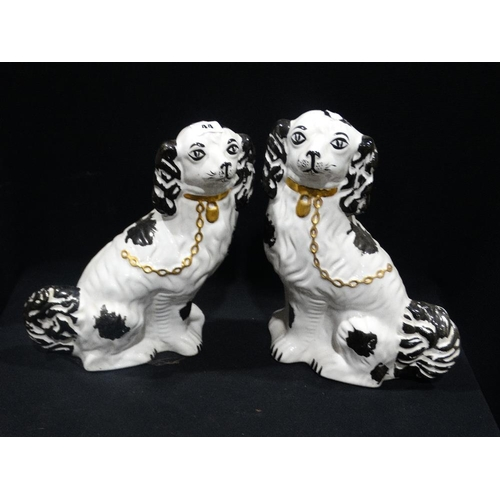 44 - A Pair Of Staffordshire Pottery Black & White Seated Dogs, 12