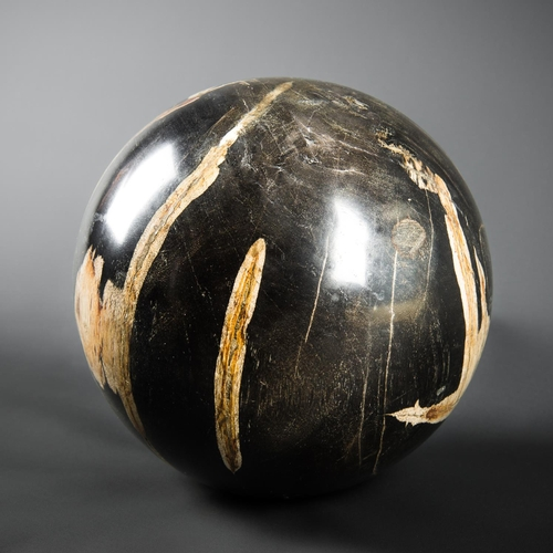 44 - A LARGE POLISHED FOSSIL WOOD SPHERE. (h 22cm x w 22cm x d 22cm)...