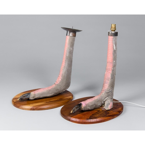 36 - AN UNUSUAL PAIR OF TAXIDERMY OSTRICH FEET MOUNTED ON WOODEN BASES Namibia July 2010. Taxidermist Nya...