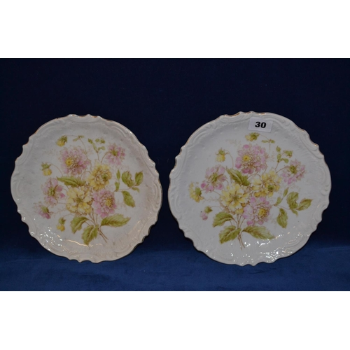 30 - PAIR OF VICTORIAN WALL PLATES DECORATED FLOWERS