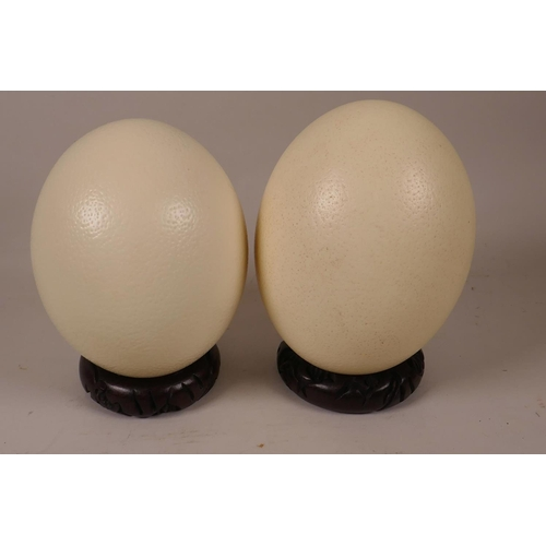 9 - A pair of ostrich eggs on carved hardwood stands, 7
