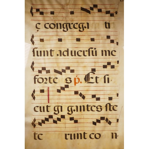 18 - A sheet of music from the C16th, hand coloured on vellum, likely produced in a medieval monastery as...