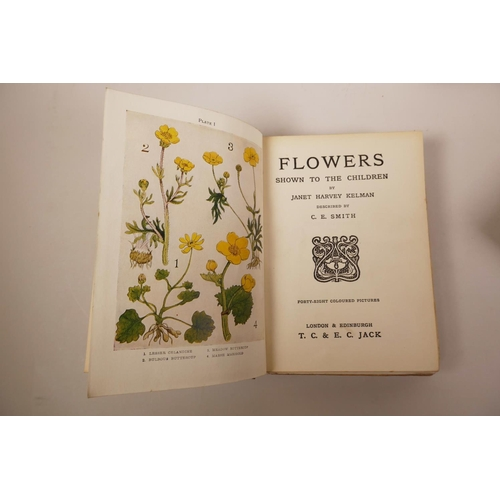29 - Three books in the 'Shown to the Children' series, edited by Louey Chisholm on 'Flowers', 'The Sea-S...
