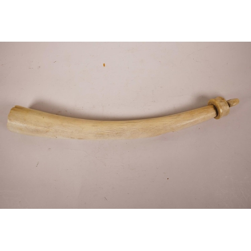 44 - A C19th African hunter's ivory oliphant, 15