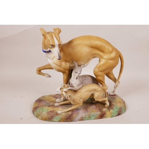 47 - A Bisque porcelain figurine of a greyhound with two pups, 8