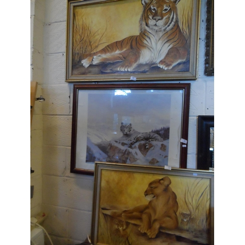 12 - 3x Framed pictures of lions and tigers...