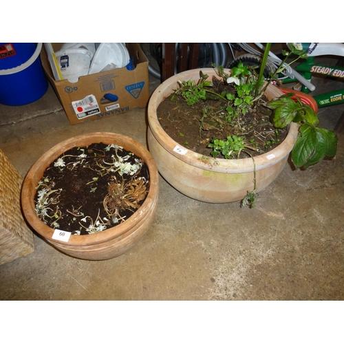 60 - 2x Terracotta planters...