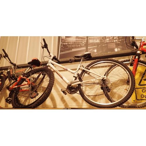 6 - Ladies Storm Falcon 18 speed mountain bike with 13