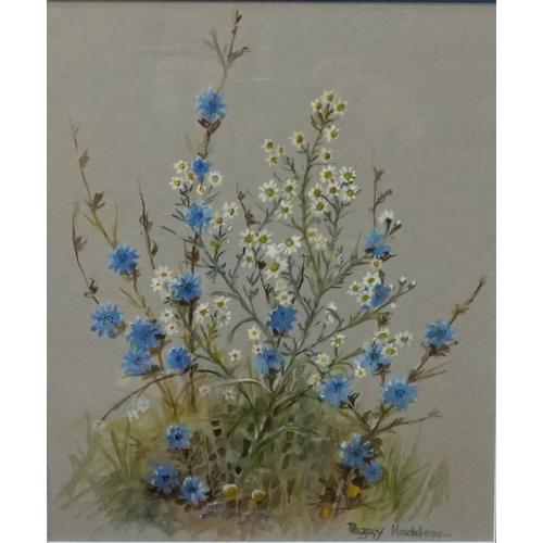 360 - JOHN S CLARK  'St.Brigid Anemones', watercolour, signed, 19.5cm x 37.5cm, and Peggy Haddow 'Chicory ...