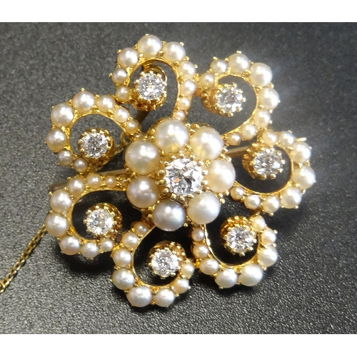 39 - EDWARDIAN DIAMOND AND SEED PEARL FLOWER HEAD DESIGN BROOCH/ PENDANT the central diamond and pearl cl...