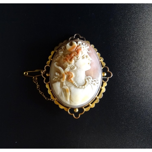 66 - SHELL CAMEO BROOCH in pierced nine carat gold mount with safety chain, the oval cameo depicting a fe...