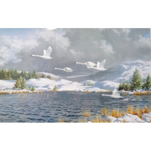 476 - ROGER CROSON Swans in flight, print, 27cm x 42cm and companion Highland evening sunset , 27cm x 41cm...