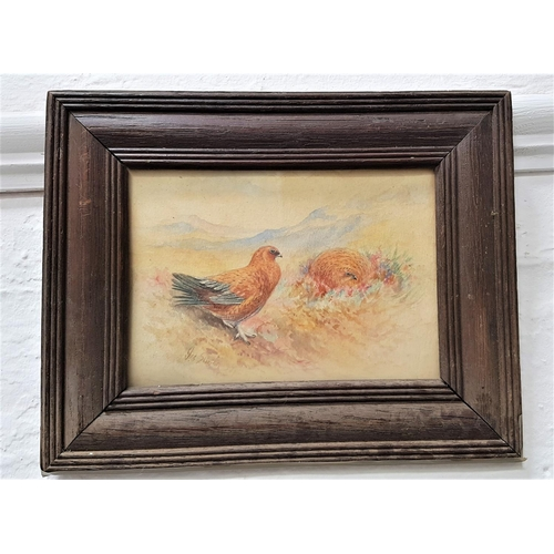 388 - JAMES STINTON Grouse In The Highlands, watercolour, signed, 11.7cm x 17cm Note; James Stinton was a ...