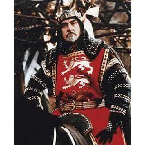 18 - ROBIN HOOD PRINCE OF THIEVES - KING RICHARD'S TABARD - PLAYED BY SEAN CONNERY Custom made full  leng...