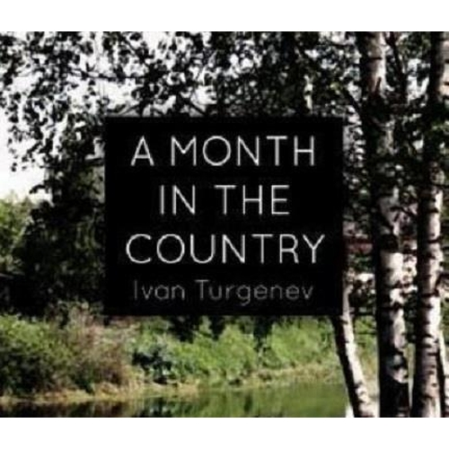 44 - A MONTH IN THE COUNTRY (1965) - NATALIA PETROVNA'S DRESS - PLAYED BY INGRID BERGMAN Custom made ladi...