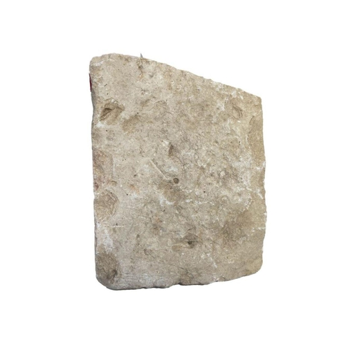 29 - Large Egyptian Hieroglyphic Inscribed Marble Fragment