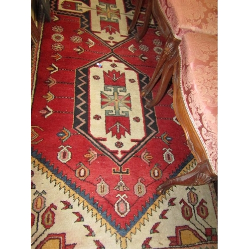 16 - Turkish Wool Rug with Patterned Borders and Geometric Design 10ft Long x 4ft Wide...