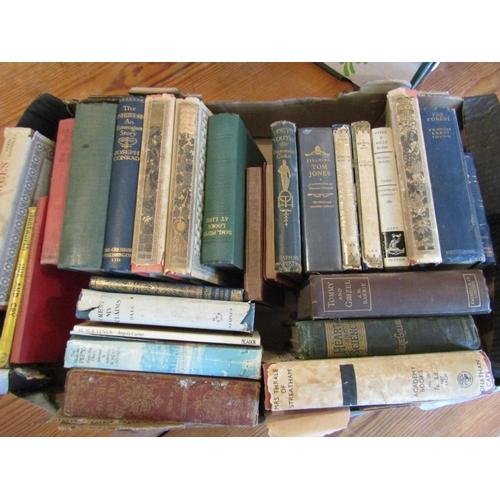 Antiquarian Volumes Quantity As Photographed Various English Novels