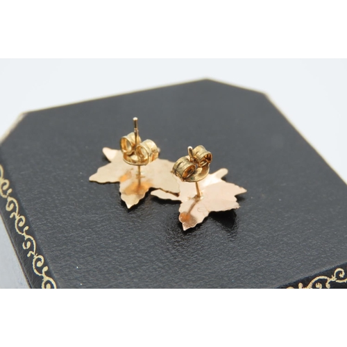 12 - Two Pairs of Ladies Earrings Mounted on 9 Carat Yellow Gold