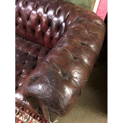 803 - Victorian Deep Button Leather Upholstered Chesterfield Settee Approx 86 Inches Wide x 32 Inches x 42...