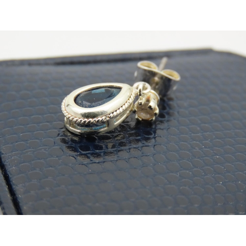 48 - Pair of 9 Carat White Gold Mounted Sapphire Drop Pendant Earrings Attractive Form Signed NB