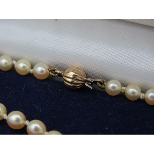 54 - Pearl Necklace with 9 Carat Yellow Gold Barrel Form Clasp