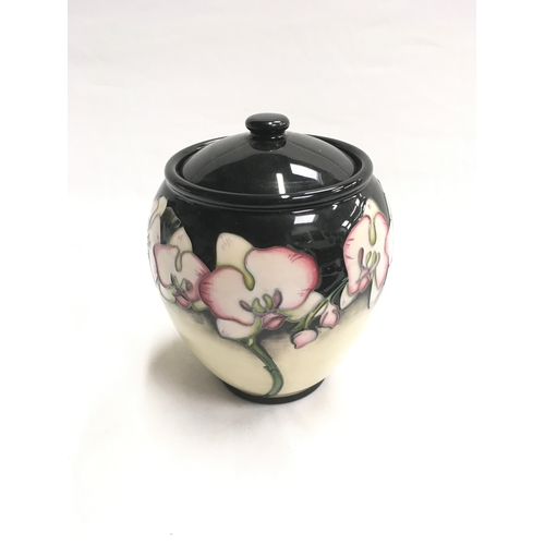 36 - Moorcroft jar and cover. Trial 16.09.09, signed to base....