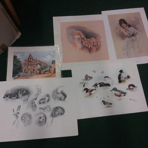 1086 - A portfolio of various prints....