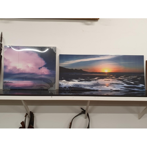 1246 - Two modern art canvases....