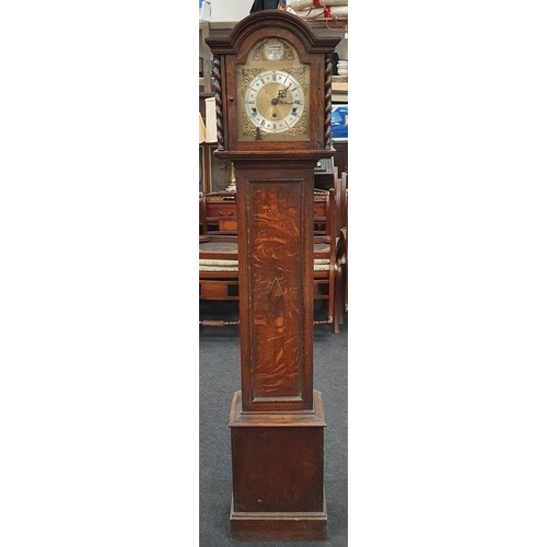 1389 - Tempus Fugile vintage grandmother clock....