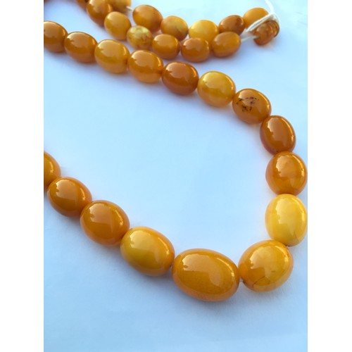 206 - A Strand of Vintage Baltic Butterscotch Yellow Amber Beads. Weight 72g. Beads 15mm - 22mm....