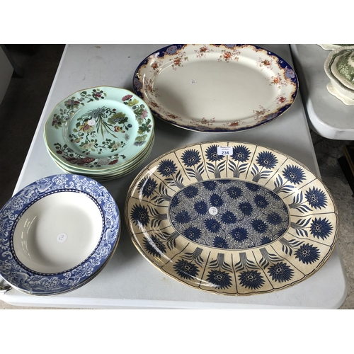 234 - A MIXED GROUP OF 19TH CENTURY AND LATER CERAMICS TO INCLUDE AN 'ASTER BORDER F&H' MEAT PLATE, FURTHE...