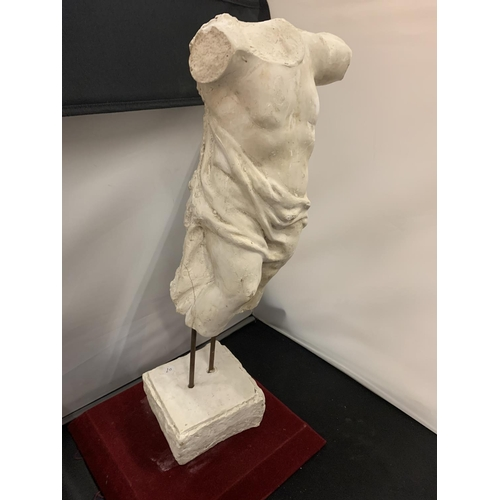 22 - A PLASTER MODEL OF A MALE TORSO (HEIGHT APPROXIMATELY 52CM)...