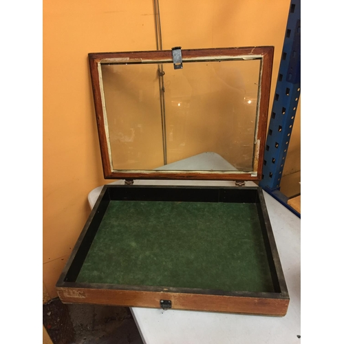39 - A LARGE GLASS TOPPED WOODEN DISPLAY  BOX  68CM X 51CM