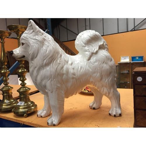 49 - A LARGE WHITE CERAMIC SAMOYED DOG