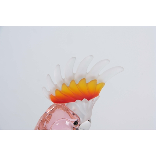 1 - A 20TH CENTURY SWAROVSKI CRYSTAL BIRDS OF PARADISE COLLECTION PINK COCKATOO 24cm high, boxed....