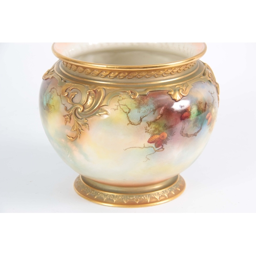 107 - A SIGNED ROYAL WORCESTER JARDINAIRE of ovoid shape with gilt foot, the body painted with peacocks in...