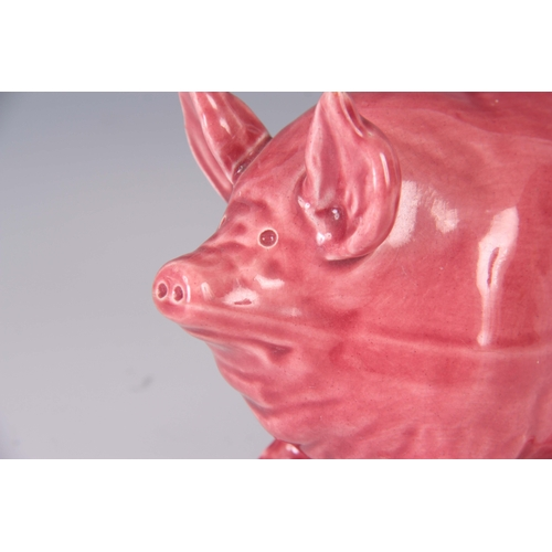 54 - A WEMYSS WARE PIG CIRCA 1900 having a pink glaze with impressed marks to underside 16.5cm wide...