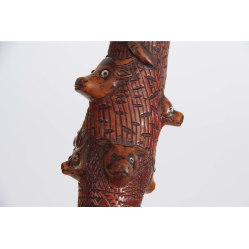 446 - A 19th CENTURY CARVED FRUITWOOD WALKING CANE decorated to the handle a carved snake with black glass...