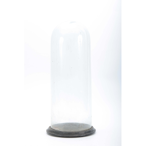 513 - A 19TH CENTURY CYLINDRICAL GLASS DOME mounted on an ebonised base 20cm diameter 52cm high....