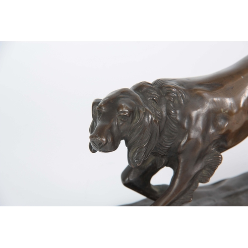 624 - AN EARLY 20th CENTURY PATINATED BRONZE SCULPTURE modelled as a gun dog on a naturalistic base 12cm h...